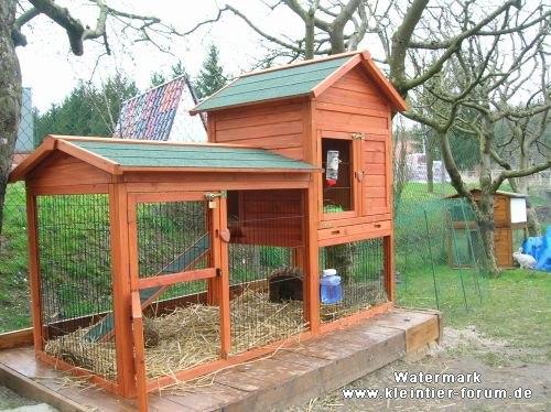 Как построить дом для морской свинки 25